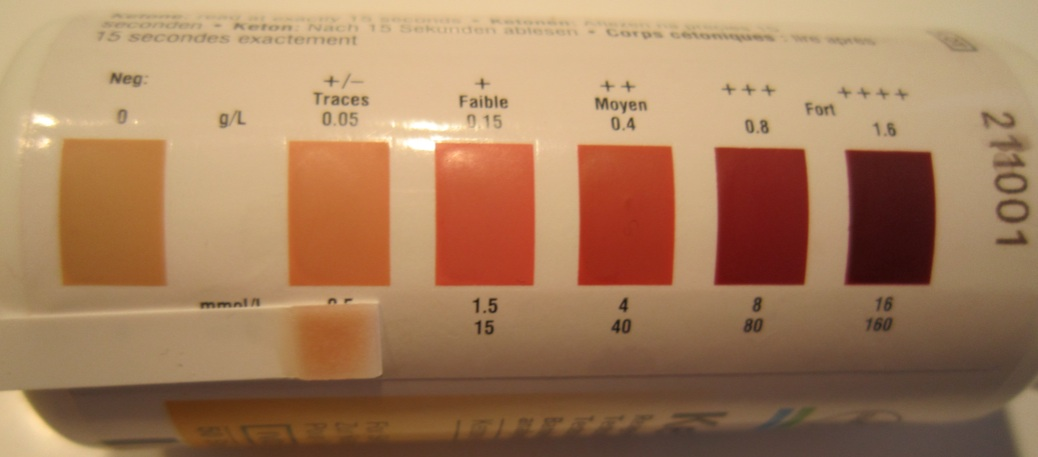 Ketosis Traces