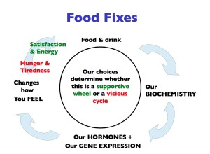 Food Fixes