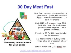 30 Day Meat Fast